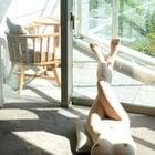 初夏陽気と全裸ヌード